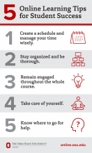 Tips for Online Learning Success Infographic