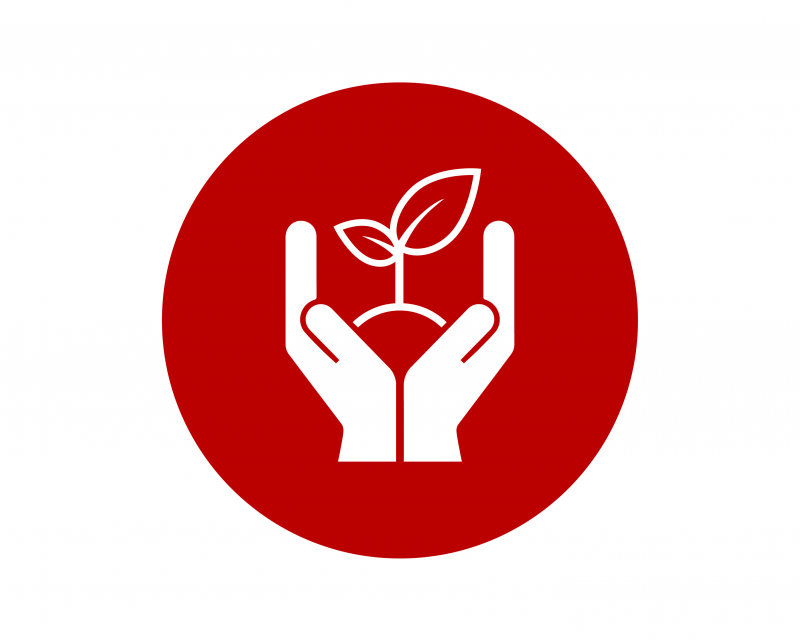 plant health icon hands holding growing plant